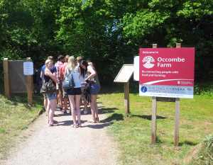 Young people queueing to get into the festival